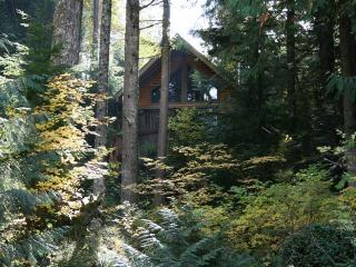 Riverview Chalet a Dog Friendly, Sandy Riverfront, Rhododendron
