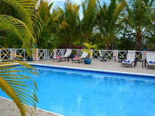 Villa Near Beach, Lush Garden, Chromatic Pool, Providenciales