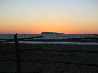 Gorgeous Virgin Beach 16 Kilometers, Zihuatanejo