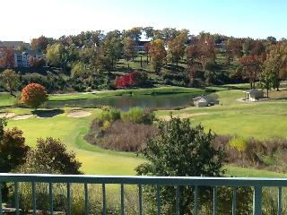 Golf View Greens * Massage Chair * Walk to Strip, Branson