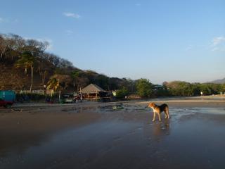Casa Pelon, Playa Maderas