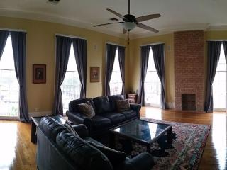 Large & Spacious Apartment on Magazine Street, New Orleans