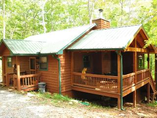 Private, Pet Friendly Cabin in Blue Ridge Georgia