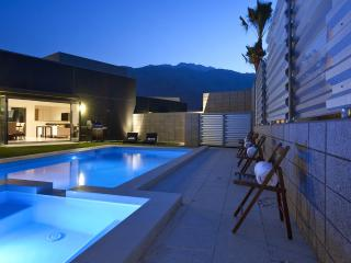New, Modern and Gorgeous, Palm Springs