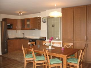 Large 3 bedroom apartment, Borovets