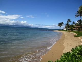 3BR/3BA - Sleeps up to 10 !, Lahaina