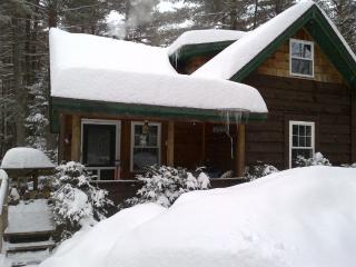 Gore Mountain Cabin, 8 min to North Creek, NY