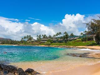 Gorgeous Beach Front Condo on the Coconut Coast, Kapaa