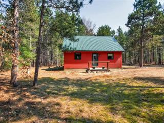 Get away from the stresses of everyday life by escaping to this serene South Boardman vacation rental cabin!