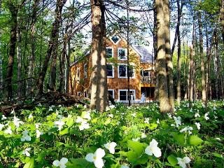 5/27-6/10 Still Avail!*Newer Home w/ Sandy Beach Lake Mich!, Harbor Springs