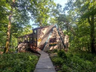 Lakefront Innsbrook Cottage w/Dock & Resort Access