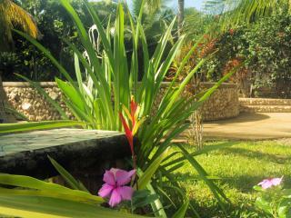 New Short Term Rental! Luxury Home, Brasilito