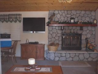 60 INCH FLAT SCREEN TV / FIREPLACE / LIVING ROOM DOWNSTAIRS