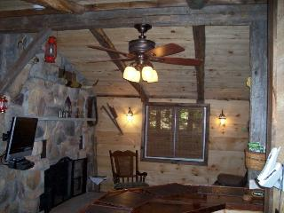 Vacation Logged Cabin with hot tub and fireplace