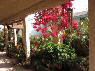 Covered garden walk to guest apartment private entance