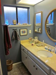 partial view of guest bathroom with shower