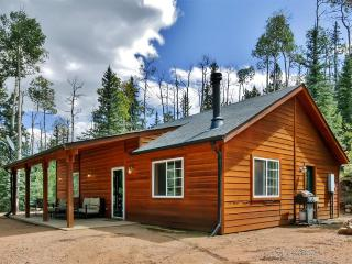 Quiet & Relaxing 2BR Como Cabin w/Wifi, Lovely Private Porch & Serene Forest Views - Easy Access to Hiking + Biking Trails, Fairplay, Buena Vista, Breckenridge & Much More!
