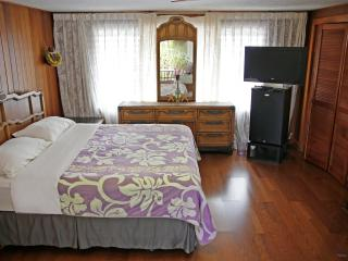 Hilo Town Studio with Wifi, Private Bath & Lanai