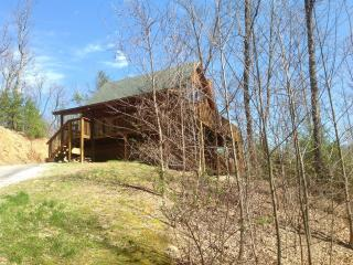 3 bedroom true log cabin complete with bears!, Gatlinburg
