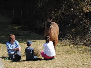 Bienvenue au Clos des Chèvres avec son chalet !, Alligny en Morvan