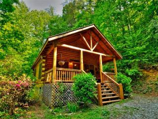 'Little Rock Creek Cabin' Quaint 1BR Genuine Log Cabin in Rich Mountain w/Wifi & Nice Porch - Near Blue Ridge, Ellijay, Outdoor Recreation & More!, Cherrylog