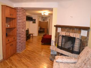 Spacious house with fireplace, Leópolis