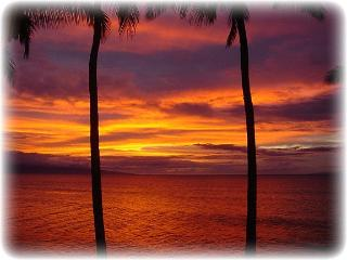 ** Amazing OCEANFRONT Sunsets ** Platinum Rated **, Lahaina