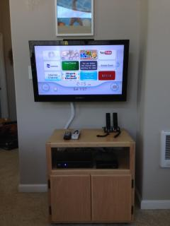 Wii and Netflix entertainment center