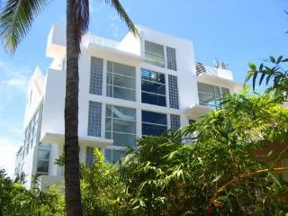 South Beach Miami Award winning Townhouse, Miami Beach