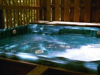 Gaylord Lakefront with 8 Person Hot Tub