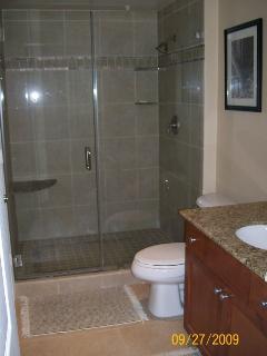 Oversized Walk-In Tile/Glass Shower