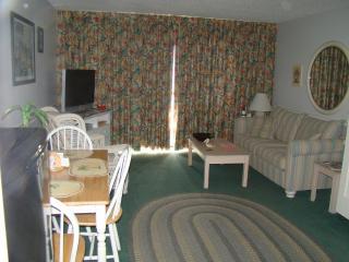 Living Rm w/murphy bed and sleeper sofa