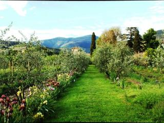 luxury apartments, garden, farm, Tuscany Villa