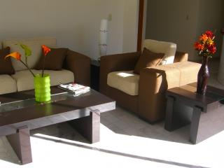 Spacious Penthouse and condos, Guadalajara