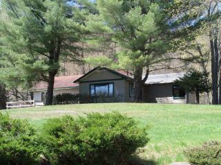 Adirondacks Old Forge 4th Lake Private Home Rental