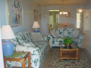Spacious living and dining area