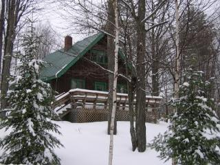 At Home in Maine's Ski Country!!, Greenwood