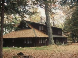 Classic Northwoods Cottage on Beautiful Plum Lake