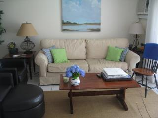 Brewster Condo - 2 Bedrooms, 2 Baths, AC