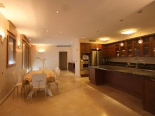 5br Super Luxury Extraordinary Apartment!, Jerusalém
