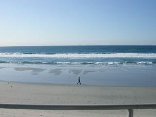 Beautiful Oceanfront 2 Bedroom with Pool, Imperial Beach