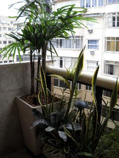 The Front Balcony Tropical Garden