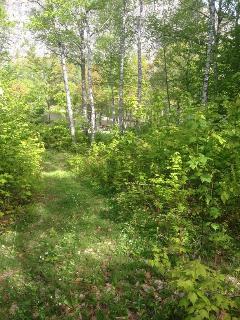 Golf-Course Trail