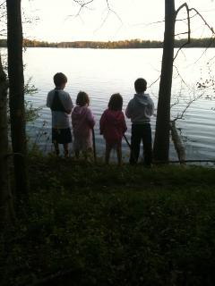 Walking trails around the lake