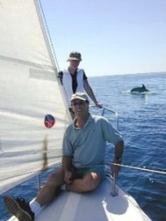 Sailing with Dolphin