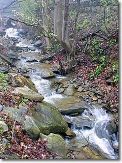 Kozy Creek