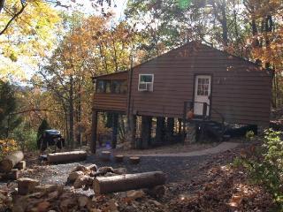 Pocono Mountain View Cabin