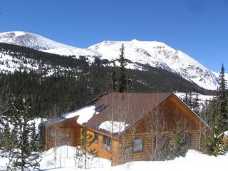 Aspen View Beautiful Log Home, Breckenridge