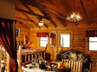 1BR/BA Log Cabin: Perfect Spot for Couples!, Branson