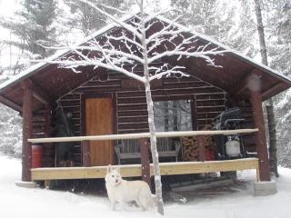Secluded Off Grid Log Cabin - Amazing Mountain Views! Hike, ATV, Kayak!
